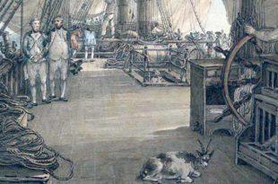 Oficiales de mar
